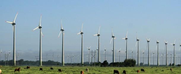La eólica dejará de ingresar 600 millones en 2013 por los últimos recortes y busca amparo en Bruselas