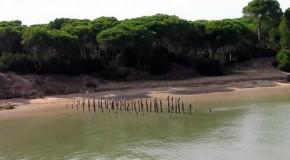 Andalucía frena el gasoducto de Doñana