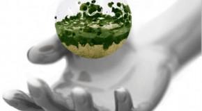 500 proyectos de ahorro y energías renovables para autónomos andaluces en 2012